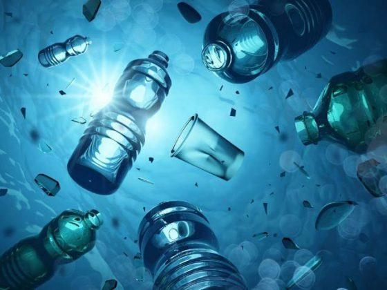 پلاسٹک سازی کے کیمیکلز دماغی خلیات کو نقصان پہنچاسکتے ہیں