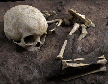 دنیا کی قدیم ترین ''باقاعدہ'' انسانی قبر دریافت