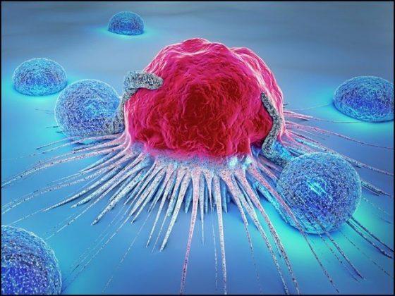 خون کو سونگھ کر سرطان کی شناخت کرنے والا مؤثر نظام