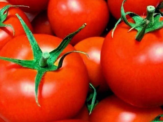دنیا کے پہلے جینیاتی تبدیل شدہ ٹماٹر کی فروخت شروع