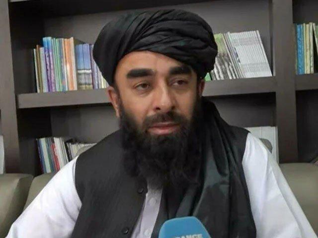 طالبان کا سابق بادشاہ ظاہرشاہ کے دور کا آئین نافذ کرنے کا عندیہ